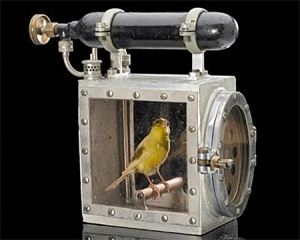 Putting the canary on life support