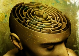 The Patterning Instinct takes the reader on an archaeology of the mind