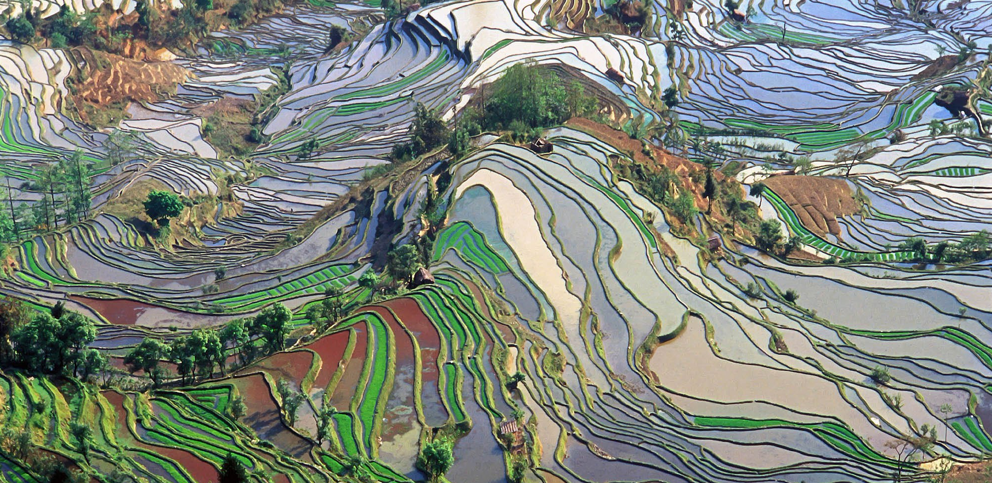terrace_field_yunnan_china_denoised.jpg